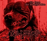 Noise Brutalizer - The Curse For Wrathful Man CD