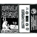 Erectile Dementia - 58 Song demo tape
