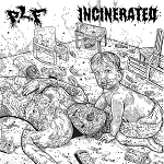 PLF/Incinerated split 7