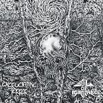 Excruciating Terror/Soil of Ignorance split 12